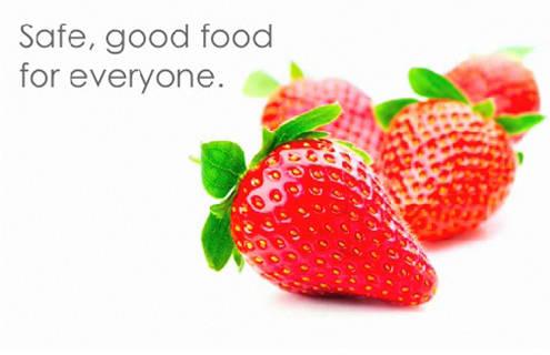 کدکس مواد غذایی۳
